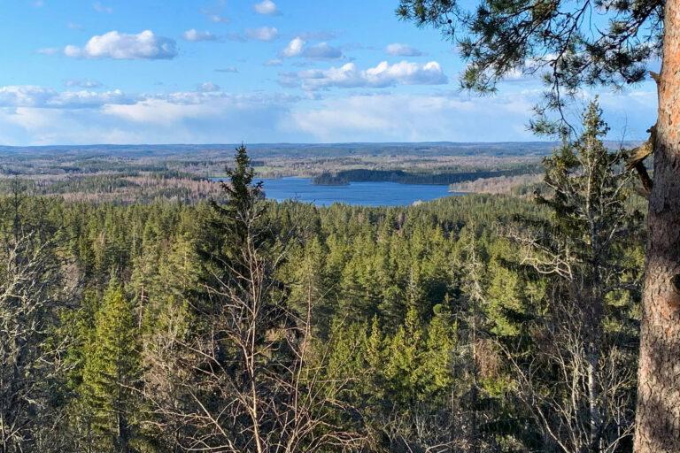 Höglandsleden utsikt från Jättabacken i Lemnhult