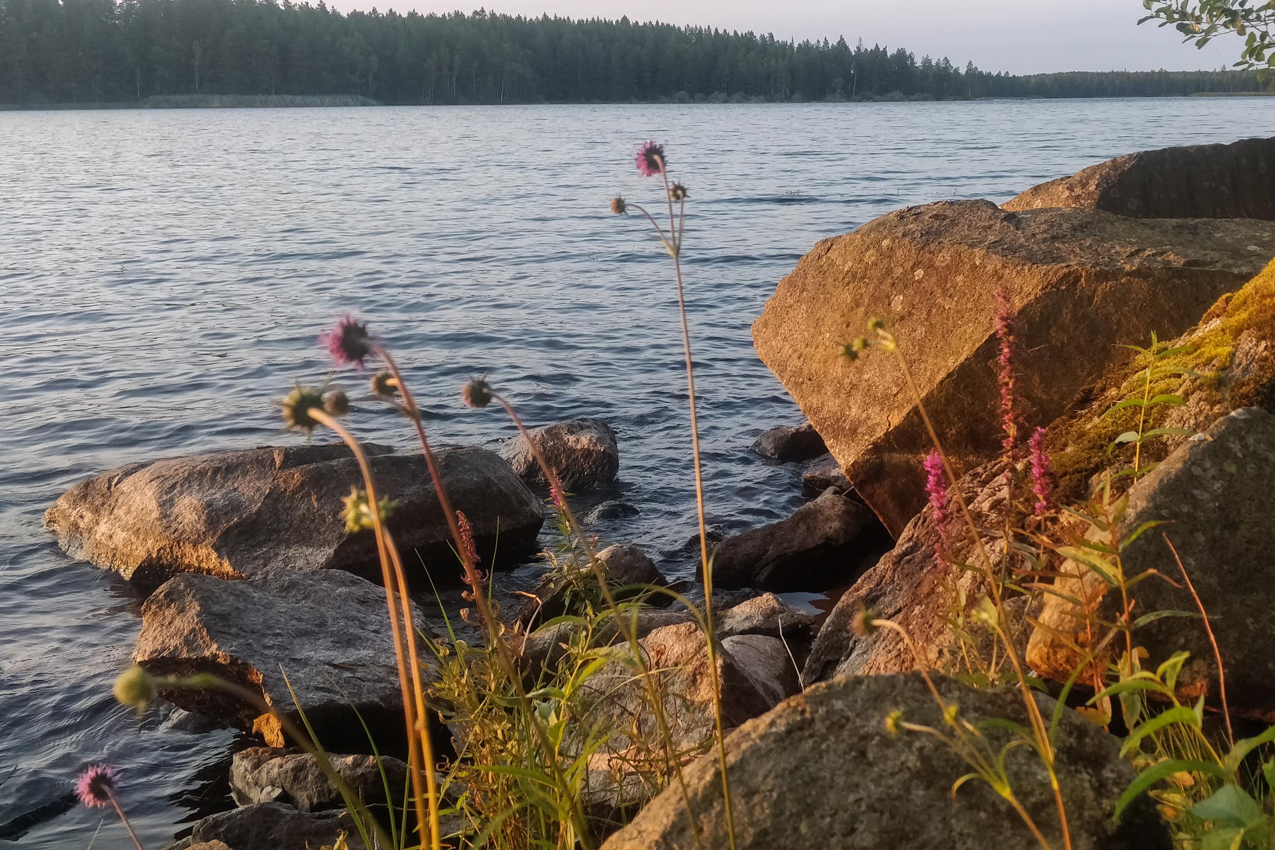 Sten vid sjön